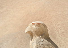 Bird of prey.. (areyarey) Tags: africa old sculpture bird statue stone outdoors temple ancient eagle symbol god head hawk famous egypt carving kings valley egyptian idol falco