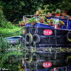 Floating pots (Zonicfoto) Tags: flowers trees ireland dublin color colour reflection water boat canal sony edit flowerpots bardge celbridge codublin a350 instagram zonicscape