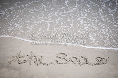 BrandiFitzgerald.LidoBeach010 (brandifitzarts) Tags: newyork beach waves scene longbeach shore eastcoast beachscene sandwriting lidobeach newyorkbeach brandifitzgerald sayingsinsand
