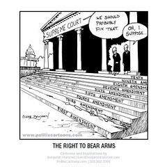 "The Right to Bear Arms • <a style=""font-size:0.8em;"" href=""http://www.flickr.com/photos/10464552@N02/9373442300/"" target=""_blank"">View on Flickr</a>"