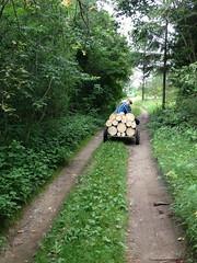 IMG_0908 (```ailona_e) Tags: parks dabas abava aktiva kandava atputa liegums