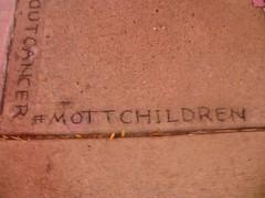 Follow the Hash Tag (Tatiana12) Tags: art chalk artist drawing michigan annarbor sidewalk mott 2013 mottchildrenshospital davidzinn blockoutcancer