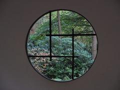 2013-10-20 [10] Den Haag (Reinoud Kaasschieter) Tags: netherlands japanesegarden nederland denhaag thehague zuidholland japansetuin parkclingendael clingendaelpark