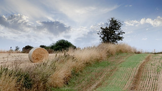 The last hay bale!