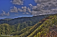 "D73_3504 (Lohiu ""John"") Tags: hawaii maui nikon3570mm28 nikond700"