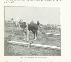 Image taken from page 41 of 'With Nansen in the North: a record of the Fram expedition in 1893-96. ... Translated from the Norwegian by H. L. Brækstad. [With illustrations.]' (The British Library) Tags: bldigital date1899 pubplacelondon publicdomain sysnum001880110 johansenfrederikhjalmar medium vol0 page41 sherlocknet:tag=land sherlocknet:tag=type sherlocknet:tag=wild sherlocknet:tag=hansen sherlocknet:tag=side sherlocknet:tag=country sherlocknet:tag=desert sherlocknet:tag=english sherlocknet:tag=wind sherlocknet:tag=animal sherlocknet:tag=service sherlocknet:tag=hand sherlocknet:tag=nous sherlocknet:tag=nation sherlocknet:tag=black sherlocknet:tag=august sherlocknet:category=organism
