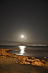 fullmoon coast (Aisha Altamimy) Tags: