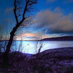Saltsjöbaden Winter, Stockholm, Sweden (Sue Wellington: photography) Tags: trees winter sea landscape sweden stockholm saltsjöbaden flickrtravelaward