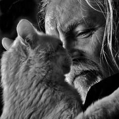 giornata mondiale del gatto (archifra -francesco de vincenzi-) Tags: portrait bw italy cat square chat gato 猫 gatto carré molise isernia кошка γάτα archifraisernia francescodevincenzi