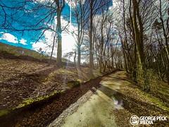 GOPR0301 (George Peck) Tags: trees light sunset summer horse cliff sun mountain 3 sunshine bike bicycle woods 5 derbyshire biking mtb hero shining lightroom gopro
