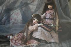 Sisters (Phantom dolly dream) Tags: face up luna volks commission bid lieselotte