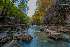 Nahr Ibrahim, Lebanon (Paul Saad) Tags: lebanon kartaba qartaba jbeil river water nature landscape green nikon wide angle trees janne creek stream forest lake