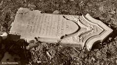 vandalized (Ultrachool) Tags: tombstone gravemarker vandalism