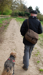 170402d606139 (Grumpy Old Tina 1960) Tags: oxted berniehulstrom lakeland terrier canine dog mutt curly
