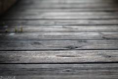 Wooden (DanAie) Tags: wooden minimal simple lines path artistic art pentax photography lucca italia italy tuscany massaciuccoli macro dof