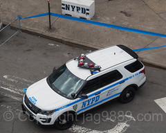 NYPD PBBX Police Car at Yankee Stadium, The Bronx, New York City (jag9889) Tags: 2017 20170415 al aerialview allamericacity americanleague architecture auto automobile ballpark baseball baseballteam bombers bronx building car cop finest firstresponder ford house lawenforcement majorleaguebaseball ny nyyankees nyc nypd nyy newyankeestadium newyork newyorkcity newyorkcitypolicedepartment newyorkyankees officer outdoor pbbx pinstripes police policedepartment policeofficer policepatrolcar suv southbronx sportutilityvehicle stadium thebronx thebronxbombers theyanks transportation usa unitedstates unitedstatesofamerica vehicle yankeestadium yankeestadiumiii yankees jag9889