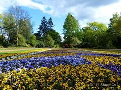 Bunter Garten (Stappi70) Tags: mönchengladbach nrw deutschland d buntergarten natur park flora blumen