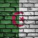 National Flag of Algeria on a Brick Wall