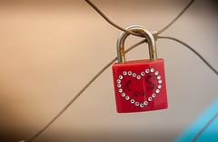 love love love (aminekaytoni) Tags: pentacon 50mm f18 canon 50d cadenas padlock red heart coeur pont macro brussel bruxelle europe love amour liefde romantic romantique paris ramance