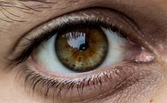 (mfernandez.1992) Tags: eye ojo green nikon d3200 nikonista nikkor 35mm lightroom presets uruguay