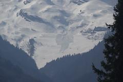 IMGP9254 (Alvier) Tags: schweiz ostschweiz rheintal werdenberg alviergebiet chrummenstein berg lawine