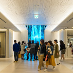 """""""Universe of Water Particles on the Living Wall"""" by team Lab(チームラボ). 11m height digital waterfall!"""