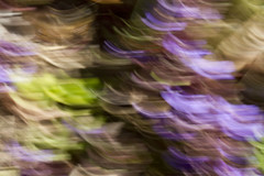 Arches of Light and Color (brucetopher) Tags: macro blur intentionalblur purple green yellow beige black contrast abstract light colorful color vibrant airy
