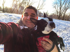 Selfie with Bully (lezumbalaberenjena) Tags: ottawa canada canadá 2017 winter cold frio hiver nieve niege snow white dog perro chien chiot boston terrier bully