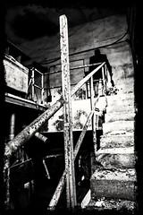 L'OSCURITÀ CHE NON VEDI È LA PIÙ DIFFICILE DA SCONFIGGERE.DARK NOT SEE THAT IS THE MOST DIFFICULT TO DEFEAT (maxduemax) Tags: oscurità oblio nero ossessione paure artisti amazing beatifull biancoenero bianco blackewhite creature coscienza cicatrice cruento canoneos6d city città cuore dinotte dignità esistenza fine fermata fire gente giochi ilvenditore inventore immortalità lettura surreale