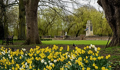 Bourne Meadows (Travis Pictures) Tags: bourne southkesteven southlincolnshire lincolnshire fenland warmemorial england brit uk spring outdoors outside britain nikon d5200 photoshop flowers daffodils flags unionflag whiteensign unionjack cenotaph