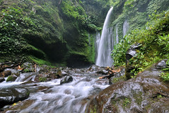 Tiu Kelep Waterfall | Lombok Island, Indonesia (Ping Timeout) Tags: lombok indonesia island paradise tropical west nusa tenggara province barat lesser sunda regency vacation holiday mount rinjani gunung reef beach hindu june 2016 landscape scene sight water spring upstream fresh waterfall tiu kelep mt volcano river stream creek flow wide angle beautiful scenery green foliage forest nature plant flora valley rock stone leaf cliff bath swim pool wet