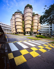 Hive (Scintt) Tags: singapore fujifilm ntu large format film sheet diy gaoersi 4x5 58mm super angulon schneider learning hub nanyang technological university interior architecture building jon chiang photography scintillation scintt glow light plants leaves layers floors levels surreal abstract curves lines tones colour slide sky clouds sun zebra crossing road street contrast iconic striking patterns textures fuji velvia rvp 100f wide angle vantage school urban modern futuristic e6 processing tetenal