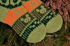 2017-04-16 008 (hepsi2) Tags: sukat socks