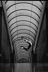 Vuela (Chis_garabis) Tags: dancers dancephotography ballerino maledancer fotografíadedanza contemporarydancer