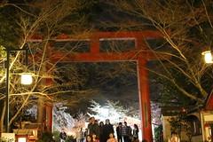 IMG_6393 Maruyama Koen (drayy) Tags: kyoto japan gion temple kiyomizudera maruyamakoen park sakura cherryblossoms 日本 京都 清水寺 円山公園 花見 桜