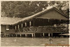 The house (Ghatahora Photography) Tags: bhupinderghatahora chaophrayariver ghatahoraphotography marketoutsidewatarun songsoftheseasingapore boathouses chinesepogodatowertemple floatingmarketchaophraya hampshirephotographer singapore thailand tourriverbangkokthailand