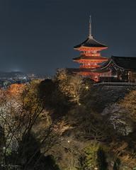_DSC2592 copy (2careless) Tags: kiyomizudera night display pagoda kyoto japan sony a7r2 contax zeiss 100mm f35 mt