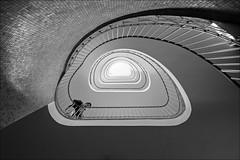 ●¤ (Heinrich Plum) Tags: heinrichplum plum fuji xe2 xf1024mm schwarzweiss blackwhite blackandwhite treppe man wendeltreppe spiralstaircase stairs stairway munich münchen street streetphotography streetfotografie staircase treppenhaus candid monochrome monochrom
