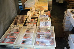 036A0800 (zet11) Tags: tsukiji nippon fish port market japan tokyo japenese