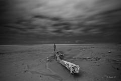 (rainbow wasabi) Tags: beach driftwood me ocean sea oregon coast pacific northwest usa america dark monochrome blackandwhite selfie