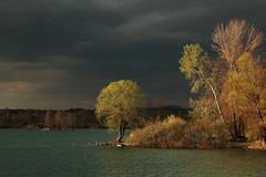 (tozofoto) Tags: europe hungary zala tozofoto canon landscape lake trees colors springtime water lights shadows travelling travel holiday