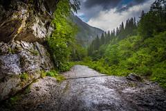 2016.06.12. Bad Gastein (Péter Cseke) Tags: bad gastein austria europe forest woods trees outdoors nikon d750 sky clouds rain summer alps alpine mountains
