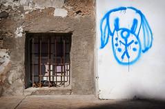 let sleeping dogs... (Dave_Davies) Tags: ibiza spain balearic island street graffiti dog asleep window