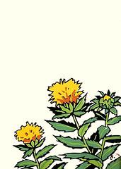 Safflower (Japanese Flower and Bird Art) Tags: flower safflower carthamus tinctorius asteraceae saburo miyata modern screenprint print japan japanese art readercollection