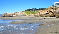 DSC_0218 (rachidH) Tags: scapes views pacific ocean sealrocks cliffhouse sutro baths tide lowtide lobos pointlobos oceanbeach sanfrancisco sf sanfran california rachidh nature