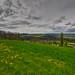 Aussi loin que l'horizon... (Meinrad Périsset) Tags: paysages printemps switzerland suisse schweiz swizzera cantondevaud chavannessurmoudon nikon nikond800 d800 irix15mmf24 captureone10