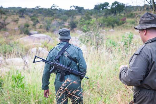KrugerParkREIZ&HIGHRES-80