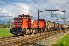 DB Cargo 6516 en DBC 64(65)?? met ketelwagens - Wieldrechtse Zeedijk - Dordrecht (Frans Berkelaar) Tags: dordrecht zuidholland nederland nl dbcargonederlandnv dbc trein ketelwagens wieldrechtsezeedijk mak6400 db6516 olympusm1240mmf28