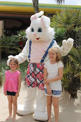 Easter Bunny 026