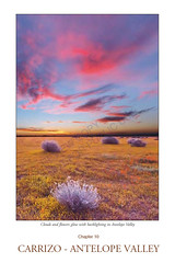 Carrizo Plain National Monument to Antelope Valley Guide (Jeffrey Sullivan) Tags: photographingcalifornia guidebook travel photography book southerncalifornia landscape chapter canon nature photo copyright 2015 jeff sullivan california usa